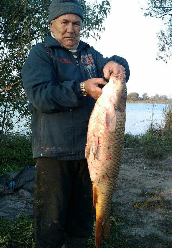 Прогноз рыбалки в ростове на дону